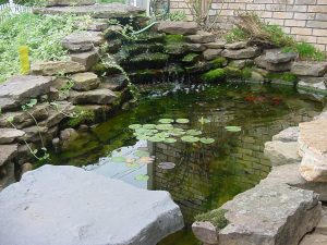 Pond Leak waterproofer
